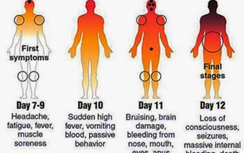 Worst Than HIV/AID: This Sickness is Fast Track To Death! EBOLA And Mosquitoes.