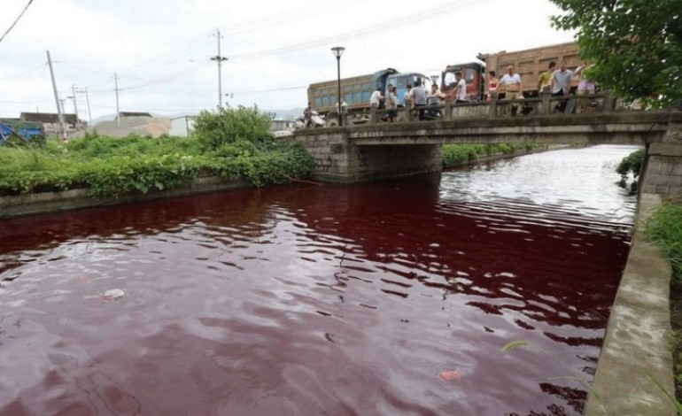 OMG! See PIctures, The 1st Plague? River Turns Blood Red In China