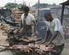 MUST Watch the VICE documentary on Bush Meat and the Ebola Outbreak in Liberia   FG in Nigeria bans Bushmeat Imports