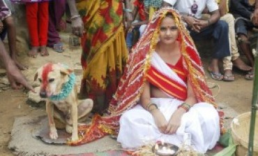OMG! Indian Girl Marries Dog To Get Rid Of Evil Spirit