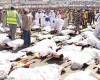 Hajj pilgrimage : more than 700 dead in crush near Mecca