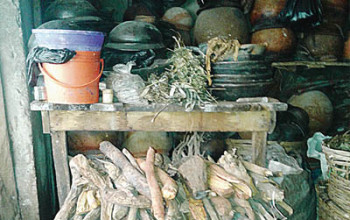 Nigeria can earn N44tr yearly from herbal medicine