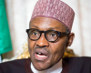 "Buhari Never called Nigerians ""Criminals""- Presidency"