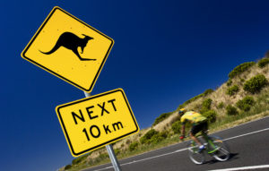 Kangaroo Bounds On Bikers, Breaking Breasts