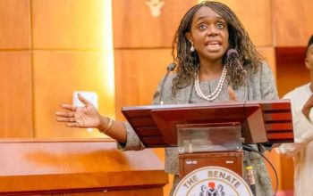 Kemi Adeosun under heavy over comment insentive and out of line – PDP