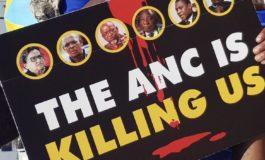 Julius Malema: The DA is running a negative campaign