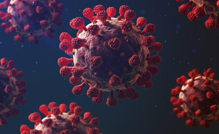 Covid: Why is coronavirus so deadly?